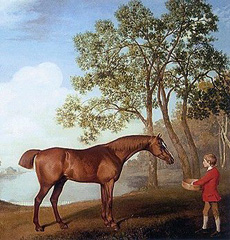 George Stubbs, Pumpkin with a Stable Lad